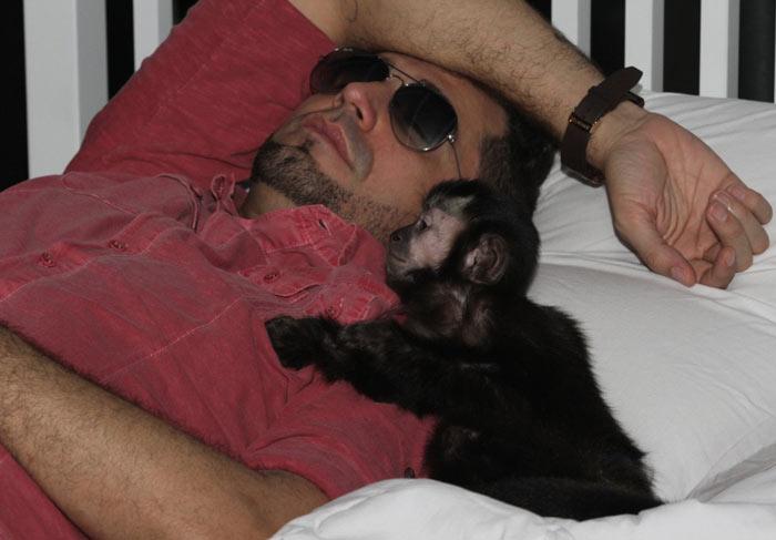 Latino cochila na companhia do seu macaco no intervalo de gravação