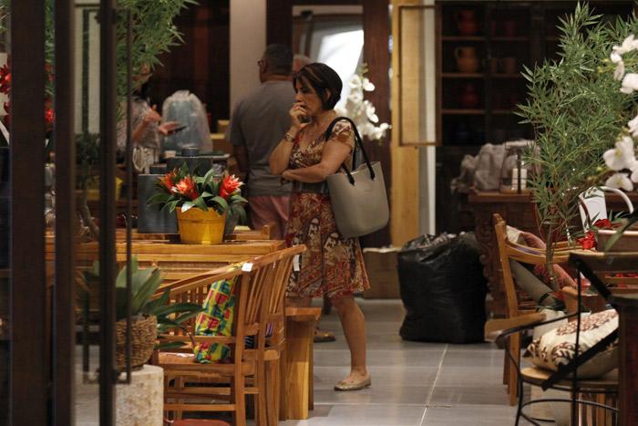 Glória Pires vai à loja de móveis em shopping no Rio