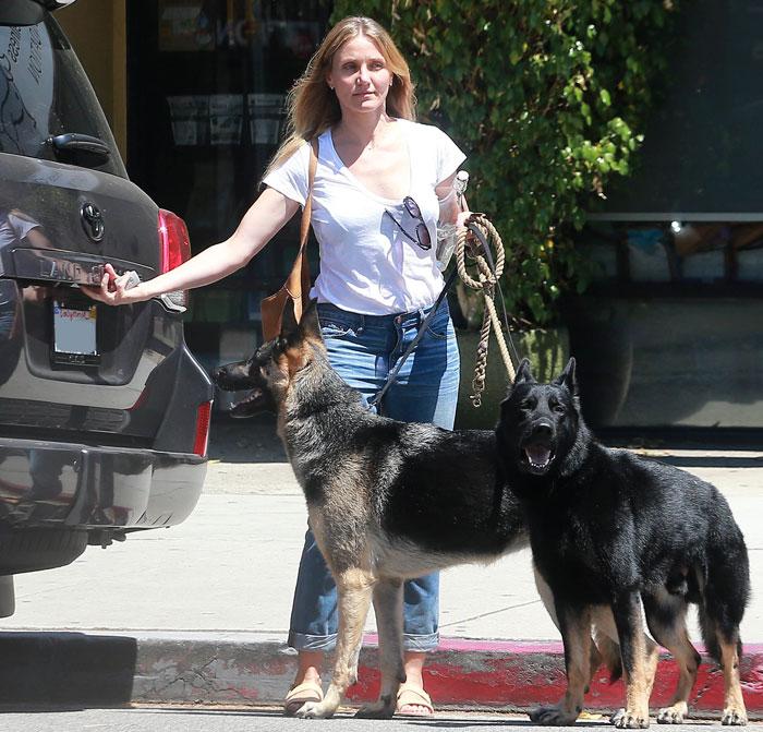 Cameron Diaz aparece 'ao natural' em passeio com seus cães
