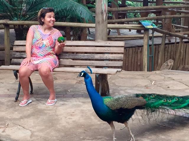 Claudia Rodrigues começa a escrever projeto de biografia