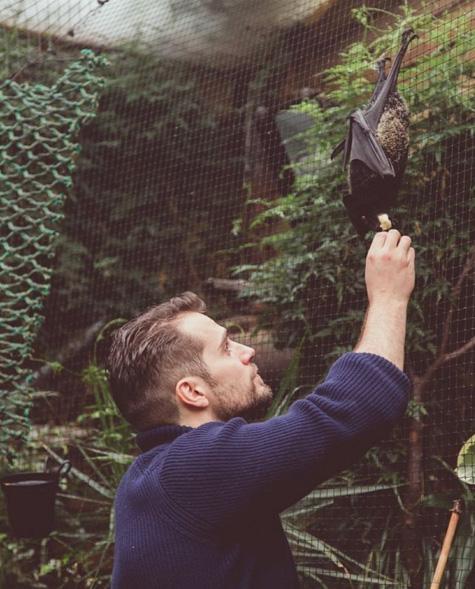 Henry Cavill apresenta seu morcego Ben
