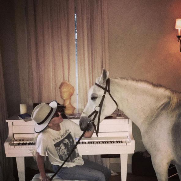 Lady Gaga compõe música na companhia de uma égua