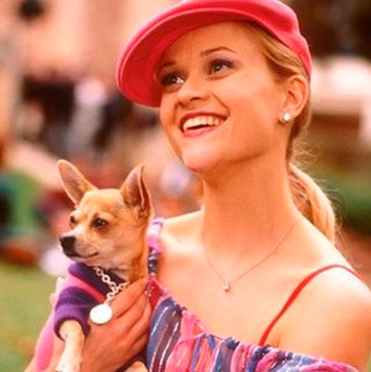 Reese Witherspoon lamenta morte de 'companheiro' de filme