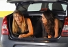 Carolina Dieckmann e Nanda Costa batem papo no porta-mala do carro -