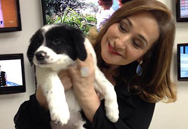 Sônia Abrão mostra sua nova cachorrinha Colombina - Reprodução/Instagram