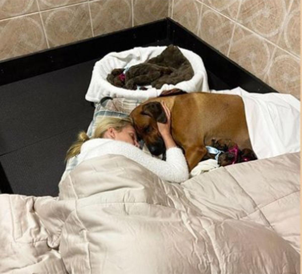 Ana Hickmann dorme no chão com sua pet