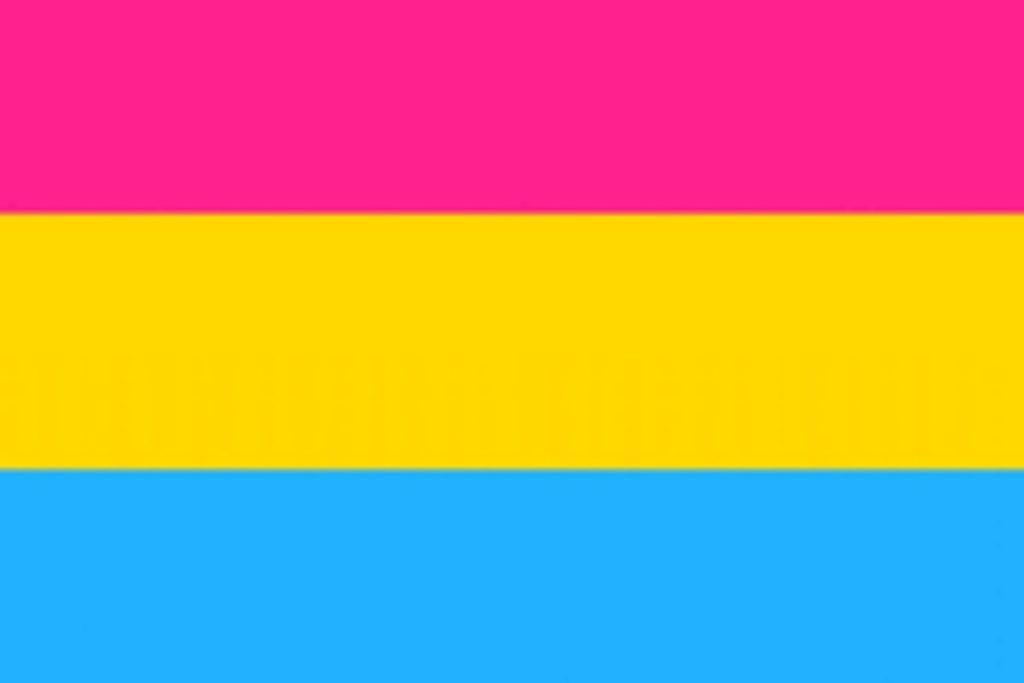Foto da bandeira do orgulho pansexual
