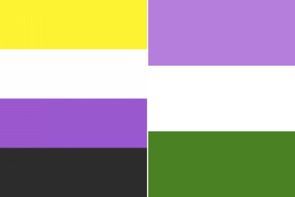 Fotomontagem das bandeiras do orgulho não binário e genderqueer