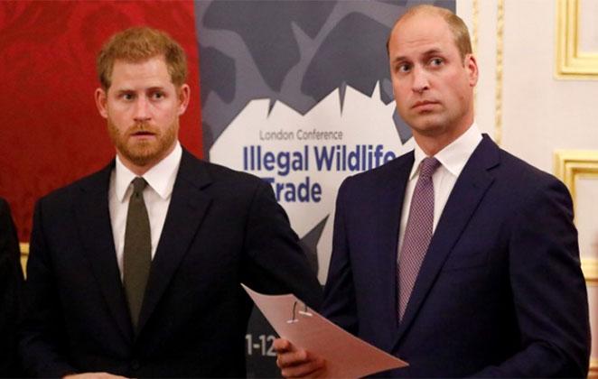 Príncipe Harry e Príncipe Wiiliam em cerimônia