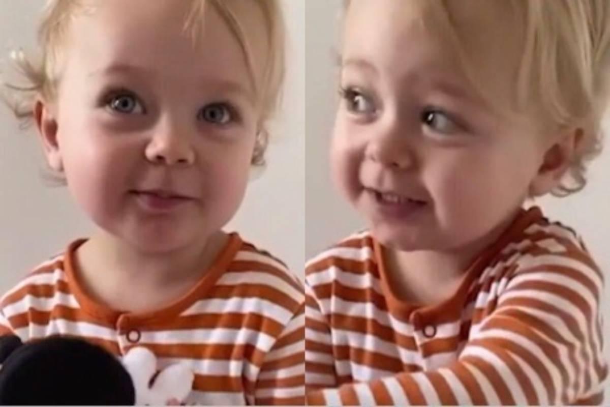 montagem com fotos da bebê alice