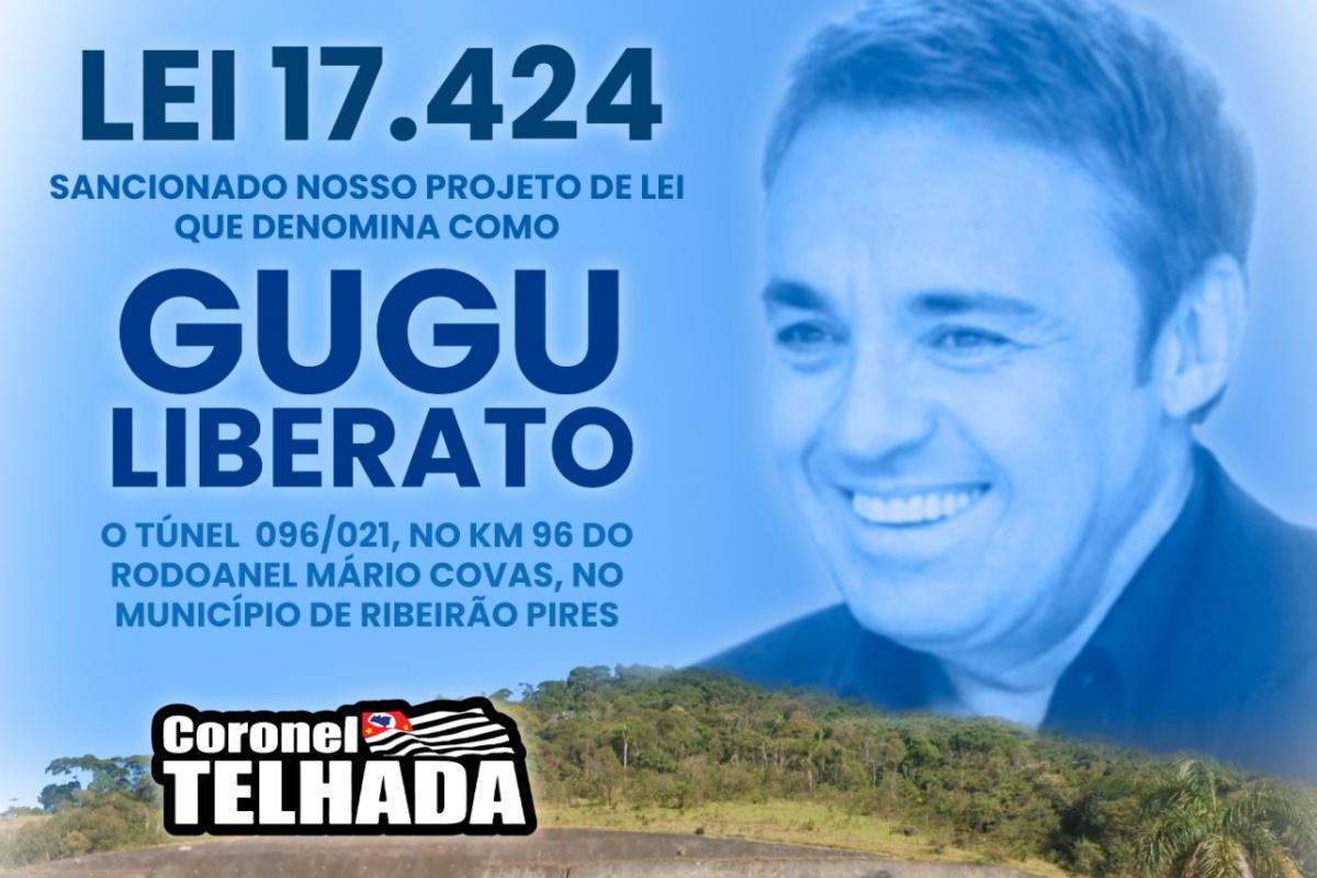 Post Coronel Telhada sobre tunel Gugu Liberato