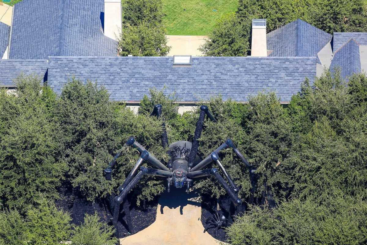 aranha gigante comprada para o quintal da casa nova de kim kardashian